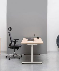 Drive -Electronic Height Adjustable Desk