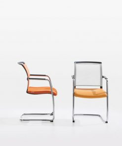 ZED- Meeting  Chair